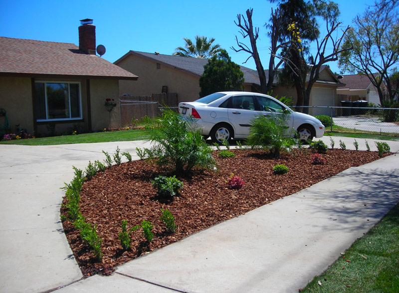 Landscaping Ideas For Front Yard Circle Drive : Queen palm landscaping contractors like a plus sprinkler and landscape